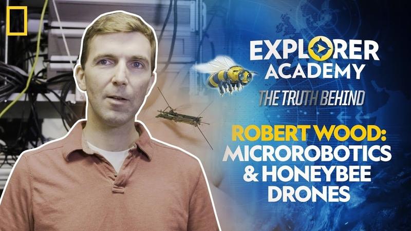 Robert Wood: Microrobotics and Honeybee Drones | Explorer Academy: The Truth Behind