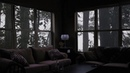 Calming rain in cozy living room ambience - Raining in the forest, relax, study, sleep [1 hour]