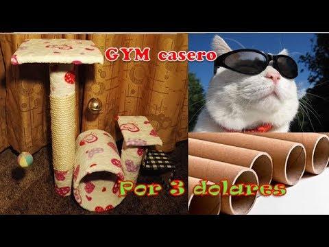 Como hacer gimnasio rascador para gatos CASERO - con material reciclado