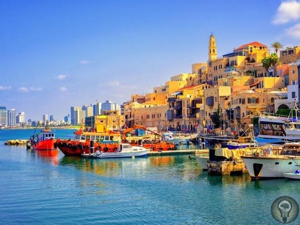 Лечение в Израиле Высокий уровень израильской медицины известен по всему миру: в стране производятся сложнейшие анализы и диагностические процедуры. Выпускаются очень качественные лекарственные