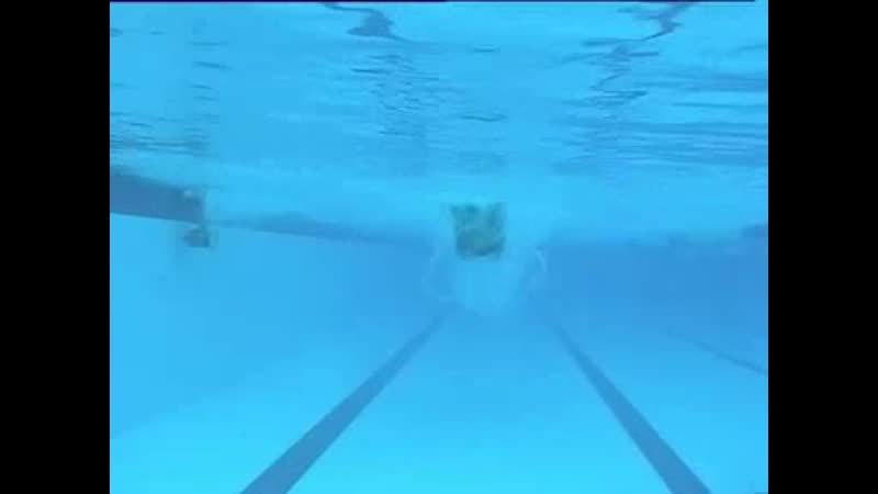 Kaio Almeida - butterfly - underwater front view