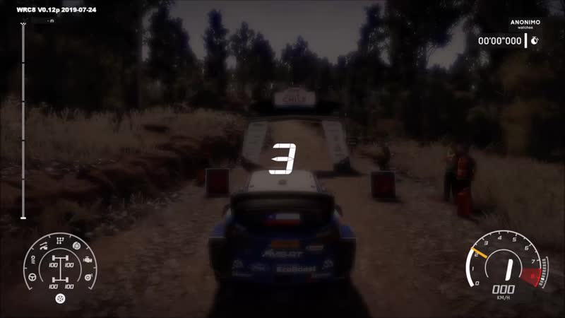 WRC 8 - Espigado - Chile Gameplay (PC HD) [1080p60FPS].mp4