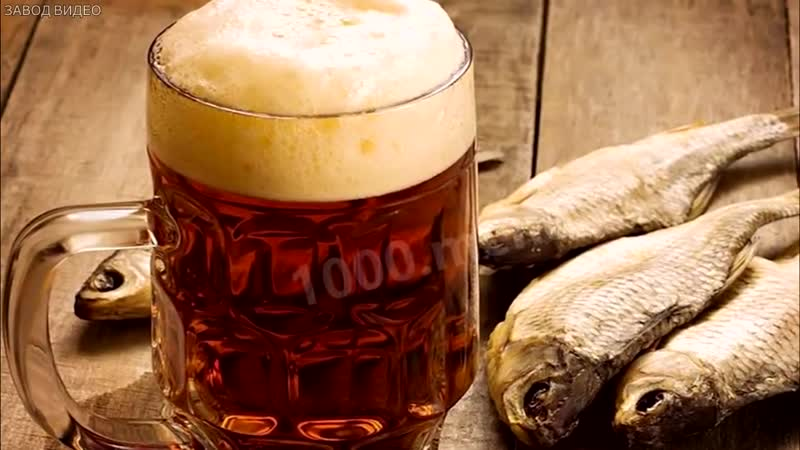 Учёные доказали пользу пива, и почему его нужно пить.