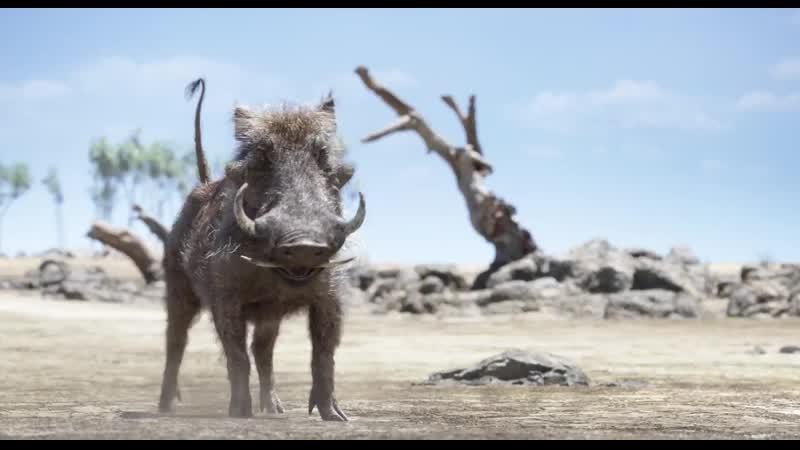 Король Лев - Наш лев по кличке Фред