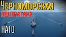 Что корабли НАТО ловят в Черном море - История, события и факты