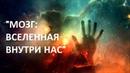 Мозг вселенная внутри нас Татьяна Черниговская