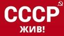 Ren TV СССР Жив и восстанавливается