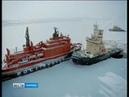Перевозки рыбы по Севморпути планируется нарастить до 100 тысяч тонн в год