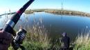 Варашиловское озеро Толстолоб на технопланктон Рыбалка на паплывок