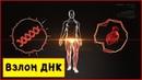 Взлом ДНК, ГЕННЫЕ КЛЮЧИ - ДИЗАЙН ЧЕЛОВЕКА, медитация концентрация = СОЗЕРЦАНИЕ, часть 1