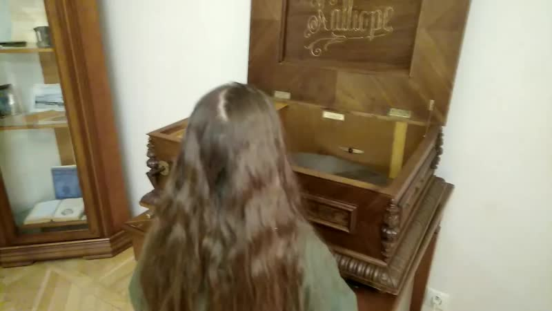 Музыкальная шкатулка в музее-усадьбе Сукачева