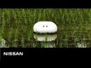 Робот-утка из Японии