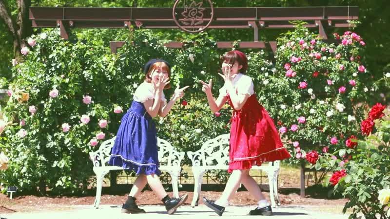 【こぼひな】アユミ☆マジカルショータイム【踊ってみた】 1080 x 1920 sm35162997
