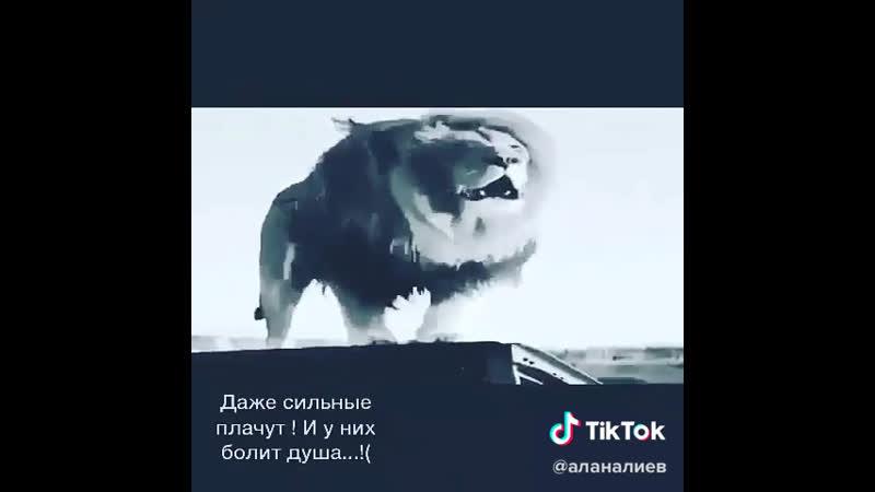 Даже сильные плачут