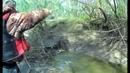 В РУЧЬЕ КИЛОГРАММОВЫЕ ГОРБАЧИ НА КАЖДОМ ЗАБРОСЕ Рыбалка 2019 monsters in the creek лужа