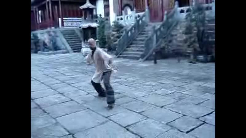 Wudang Bagua Zhang Fan Form YouTube