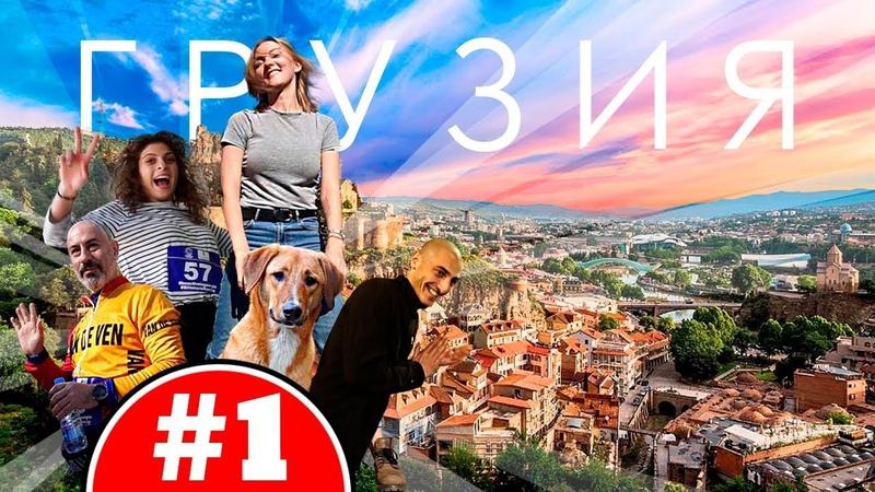 Тбилиси Грузия 2019 Голодовка Чача и Вино Уличные животные Старый город Грузинская еда