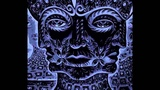 Tool - Rosetta Stoned