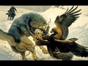 Đại Bàng Vàng Những Trận Đi Săn Kinh Điển