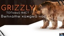 НОВЫЙ ВЫСОКО ДОХОДНЫЙ ПРОЕКТ Grizzly Forex ЗАРАБАТЫВАЕМ КАЖДЫЙ ЧАС