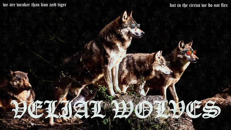 VELIAL WOLVES