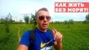 ВЛОГ Отдыхаем в Беларуси. Природа, озеро и ёжики. Дети круто танцуют на дискотеке