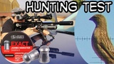 Hunting with JSB Monster Redesigned - Airgun Pest Control