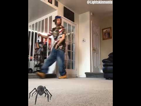 Oh sh*t a spider