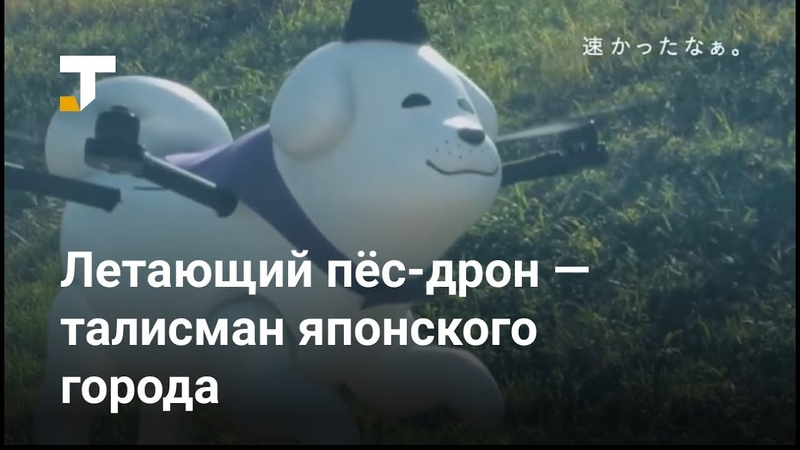 Талисманом японского города стала летающая собака-дрон