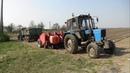 Посевная 2019Два Беларуса МТЗ 82 на работают посадке картофеля
