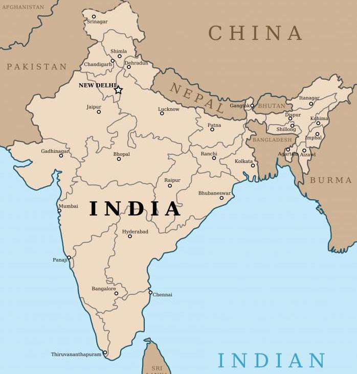 Брахми - растительное лекарственное средство, родом из Индии.