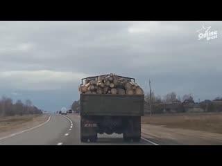Перевозка брёвен в Иваново