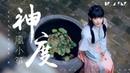 風小箏 - 神度【歌詞字幕 / 完整高清音質】♫「相守不過夢一場 」Feng Xiao Zheng - Deity