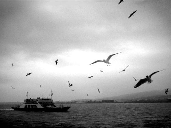 Dario Moreno - İstanbul un Kızları | Nostaljik Martılar