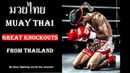 Muay Thai ✅ Great knockouts from thailand