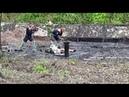 Спасение собаки из битумной ямы в Биробиджане