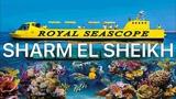 ШАРМ ЭЛЬ ШЕЙХ Перепутали экскурсии! Экскурсия Батискаф Royal Sea Scope. ЕГИПЕТ 2019 VLOG