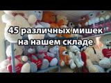 45 различных мишек в наличии на нашем складе в Чебоксарах.