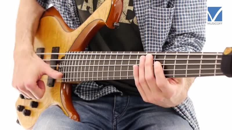 Новый бас урок от Alex Lofoco