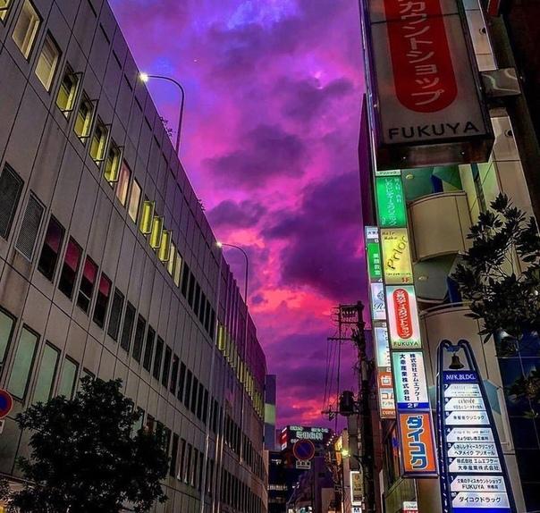 За несколько часов до тайфуна «Хагибис» небо в Японии стало ярко-фиолетовым