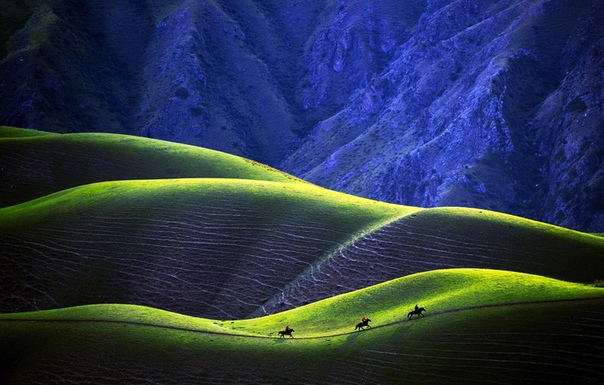 Чудесная абрикосовая долина Йили в провинции Синьцзян, Китай.