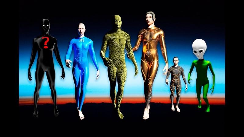 ¿Qué Razas Extraterrestres Visitan la Tierra?