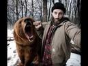 Поляки были удивлены, когда челябинские мужики избили медведя