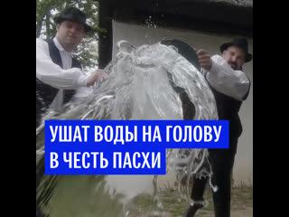 Ушат воды на голову в честь Пасхи