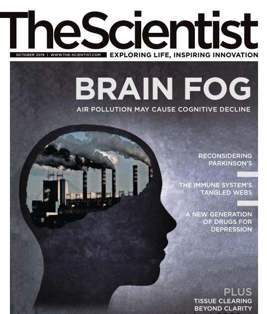 The Scientist - October 2019