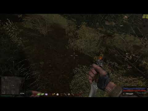 Где найти вояку с поломанным телепортом в Забытом лесу по квесту Креста