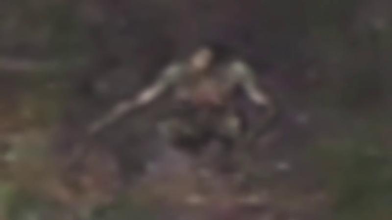 шок отдыхающие засняли на видео пришельца рептилоида 2018 2019
