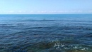 14 июня 2019 / Ольгинка / Погода, заброшенный пляж оц Кубань и мой первый заплыв в этом сезоне