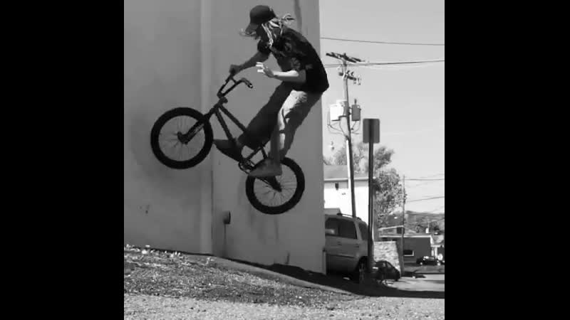 Max Speck | BMX