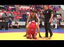 Международный турнир по греко-римской борьбе